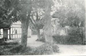 Enegaard 1901-1902 b