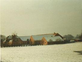 enegaard 1980 2
