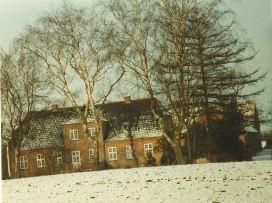 enegaard 1980