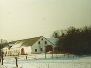 højgaard 2